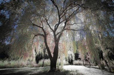 image from i468.photobucket.com